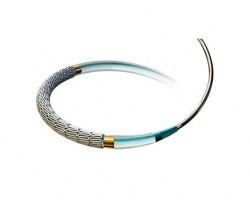 Medtronic Resolute RX Coronary Drug Eluting Stent